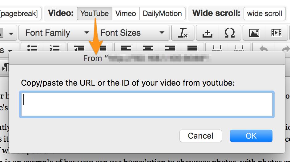 Video Plug plugin